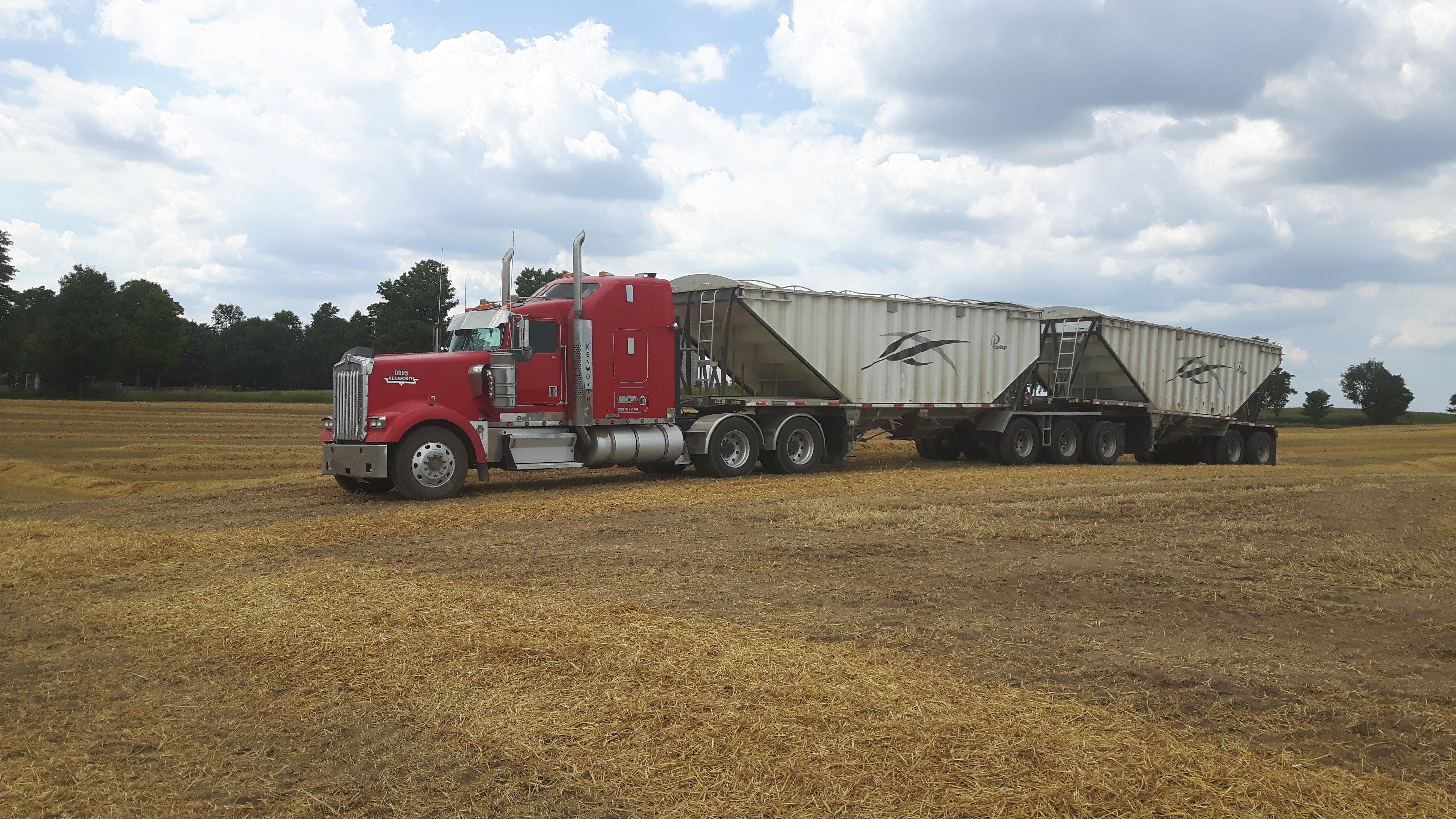 3 Sets of Grain Trains